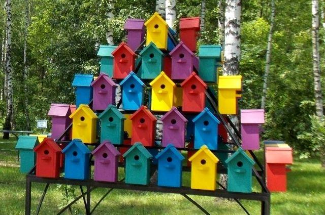 В Новосибирске готовят дворцы для птиц.