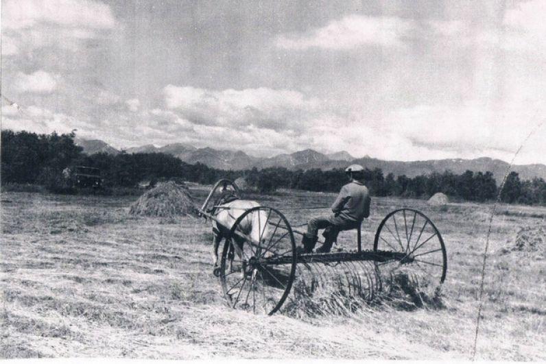 Уборка урожая в 70-е годы.