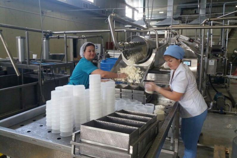 В конце 2017 г. началось производство сыра.