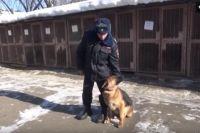 Острый нюх пса помог быстро отыскать подозреваемых.