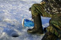 Любители зимней рыбалки рады даже мелкой таранке.