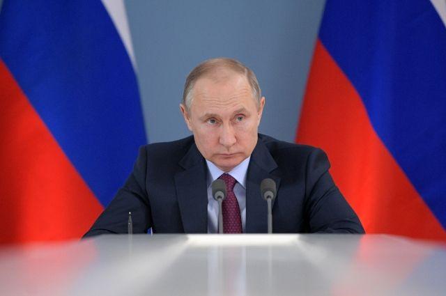 Владимир Путин утвердил закон озапрете контактной притравки собак