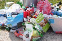 Тюменцы возмущены поведением соседа: он выбрасывает мусор во дворе