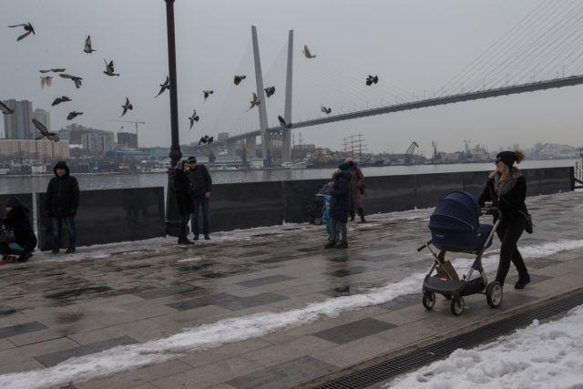 В городе у моря людям приятно бродить по берегу, а птицам - парить над волнами.