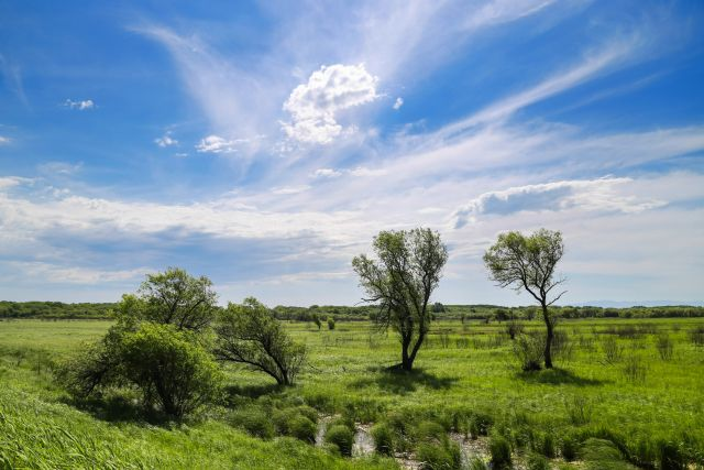 Свободной земли в крае значительно больше числа его жителей.