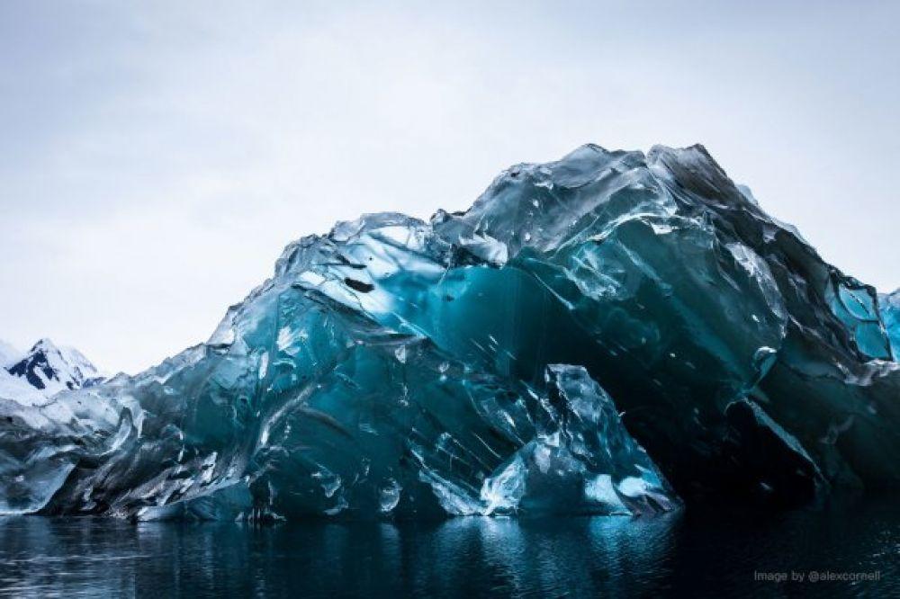Алекс Корнелл зафиксировал уникальное явление – синие айсберги.