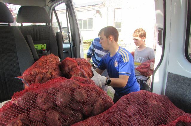 В Упоровском районе появится завод по переработке картофеля