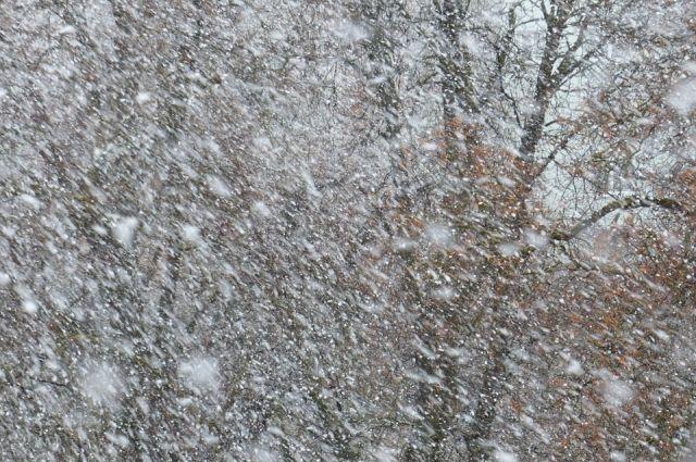 В Пензенском регионе объявлено штормовое предупреждение