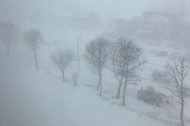 МЧС: в Оренбуржье в день выборов президента будет туман и метель.
