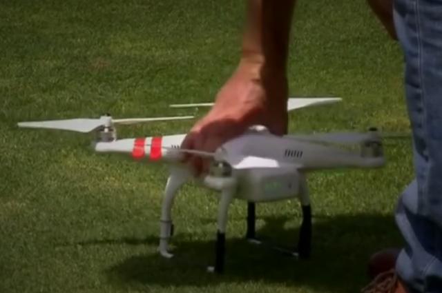 Вместо пчел: в США создали дроны для опыления растений