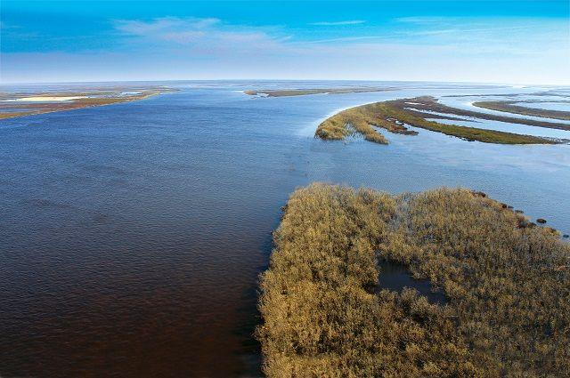 Река Таз