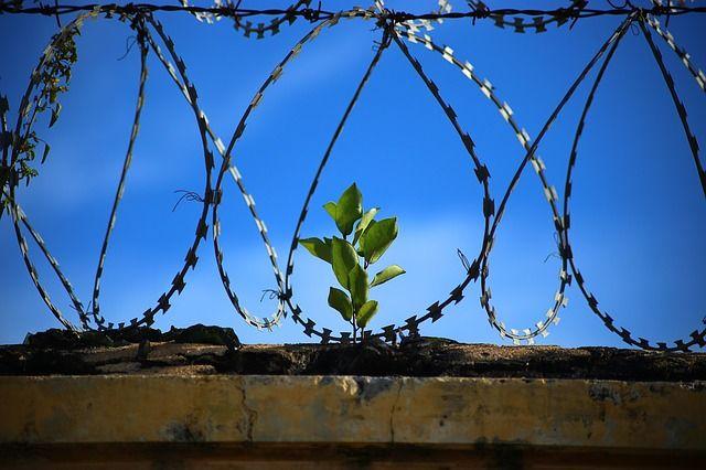 14 лет тюрьмы получил нижегородец за сексуальное насилие над дочерью друга.