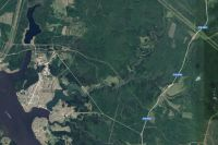 Космический мониторинг позволит оперативно получить данные об изменениях на территории лесного хозяйства.