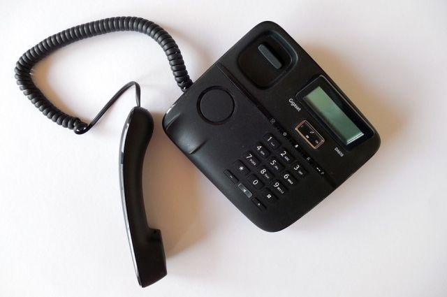 Омичи смогут задать вопросы по телефону.