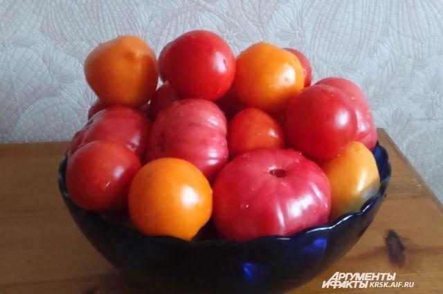 Почему в магазинах импортные помидоры?