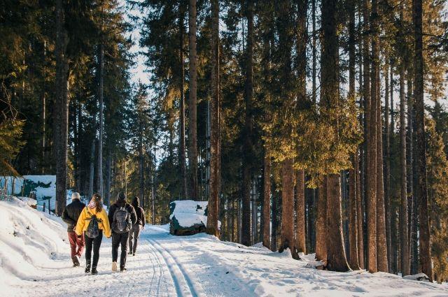 За городом в лесу ещё зима, хотя в городе снег уже начал таять.