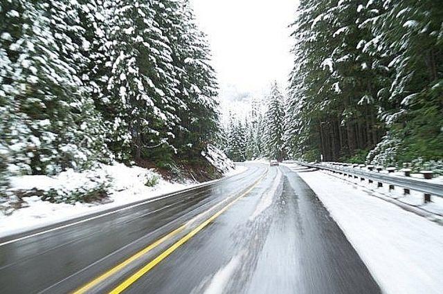 Автомобили не могут на скользкой дороге заехать в гору.