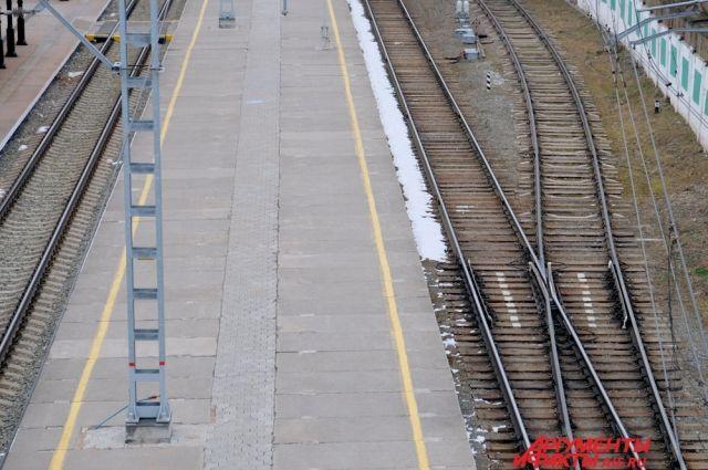 ВВоронежской области ребенок умер, пытаясь сделать селфи накрыше поезда
