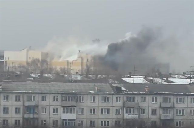 Путин поручил Бастрыкину дать оценку действиям должностных лиц вКемерове
