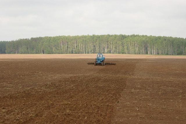 Смоленским аграриям бесплатно выделят 1250 тонн удобрений