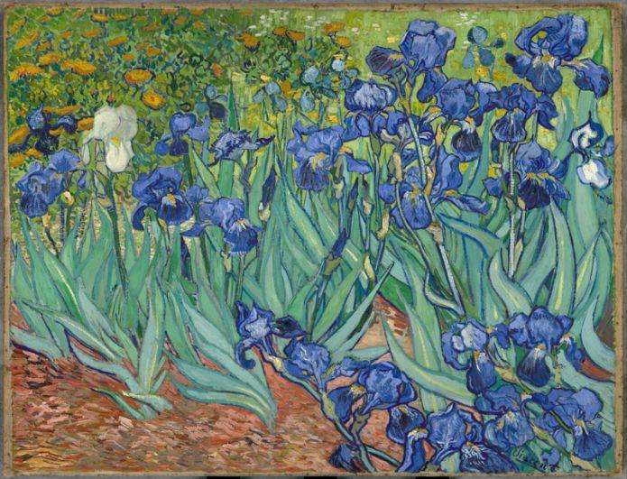 В 1987 году знаменитые «Ирисы» Ван Гога были проданы за 53,9 млн долларов бизнесмену Алану Бонду. Однако у того не было достаточно денег, чтобы завершить сделку и в 1990 году картина была перепродана музею Гетти в Лос-Анджелесе.