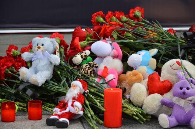 Глава ОП Москвы рассказал о покупке игрушек для акции на Манежной площади