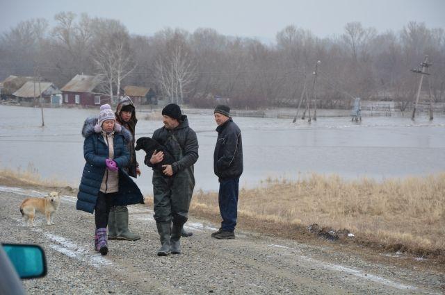 Жители посёлка Позаймище Курьинского района, полностью эвакуированного из-за паводка, не оставляют на произвол стихии своих домашних любимцев.