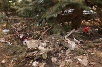 Ёлки на усеянной мусором земле - следы нашествия туристов на Пидан.