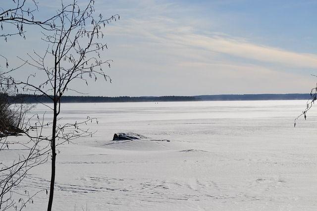 О том, что на льду лежит человек в полицию сообщили сотрудники предприятия, расположенного неподалёку. Они заметили тело, посмотрев видео с камер видеонаблюдения