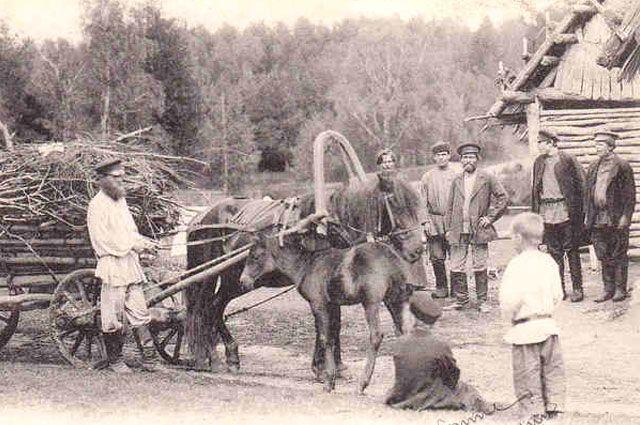 Ярославские крестьяне стали прототипами героев знаменитых романов.