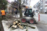 Обрезка и вырубка деревьев - больная тема для горожан.