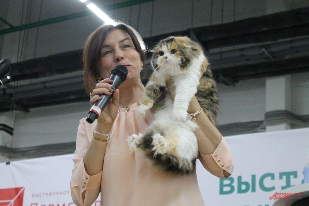 Эксперт по кошкам Ольга Друздь оценивает первую участницу выставки