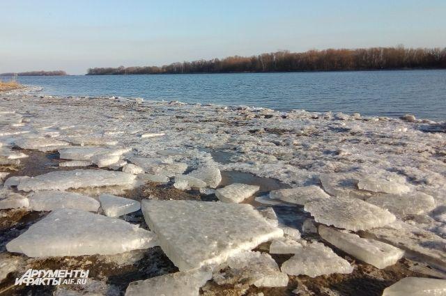 Брянский подросток оказался на оторвавшейся льдине на реке Десна.