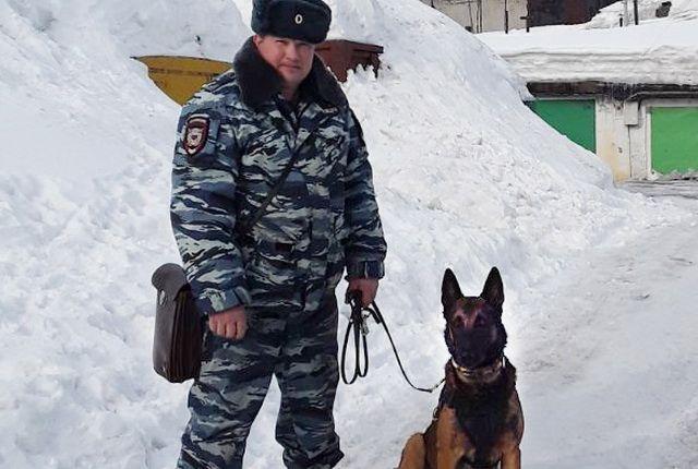 Дмитрий Космачев с Аргусом.
