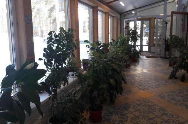 Сейчас холл «Дома радужного детства» похож на мини-сад.