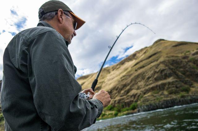 В Украине с апреля вводится запрет на рыбную ловлю | Закон ...
