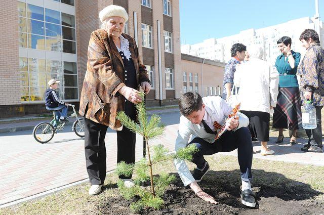 Работы по озеленению начнутся с 1 мая.