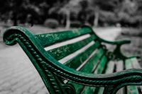 Принято решение об увеличении территории озеленения парка, установки скамеек, вазонов и урн.