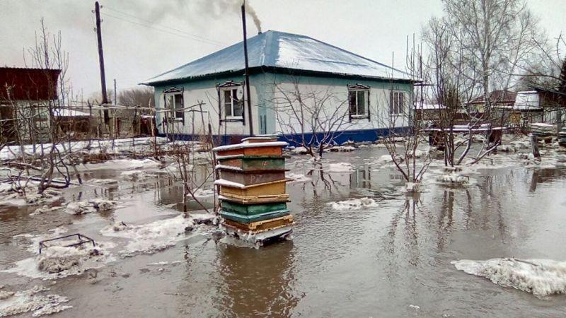 Алтайский край, Усть-Козлуха.
