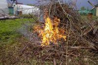 В Украине увеличат штрафы за самовольное сжигание сорняков на участках