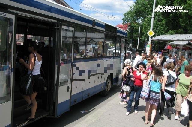 В дни тестовых матчей продлевается работа автобусов в Калининграде.