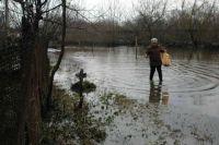 В Украине начинается масштабный паводок: каким областям грозит «потоп»