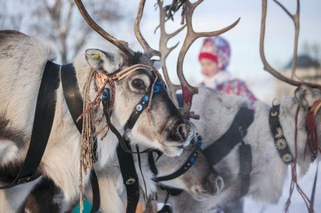 Ненецкий художник Леонид Лар посетит Тюмень
