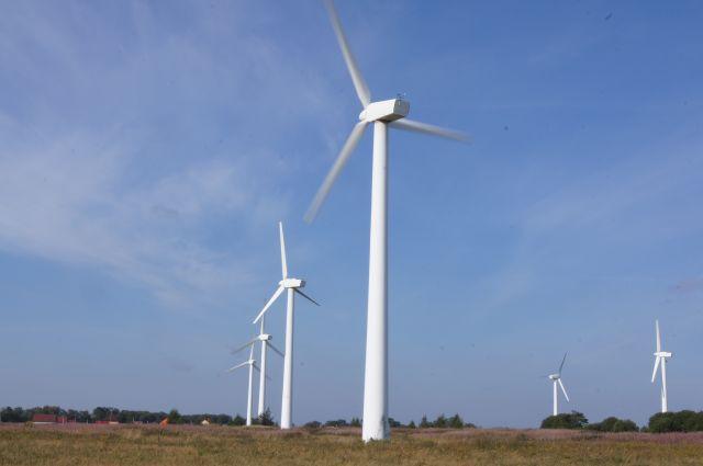 МЧС предупредило об усилении ветра в Калининградской области до 19 м/с.