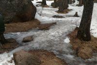 Жители Тюмени задали рекордное число вопросов по уборке снега