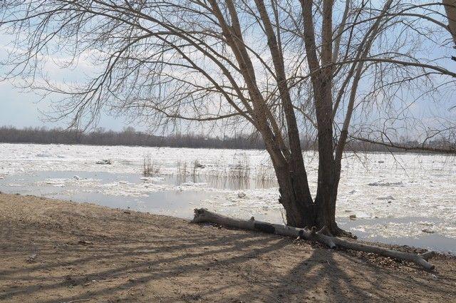 К середине апреля в Омске ожижается ледоход.