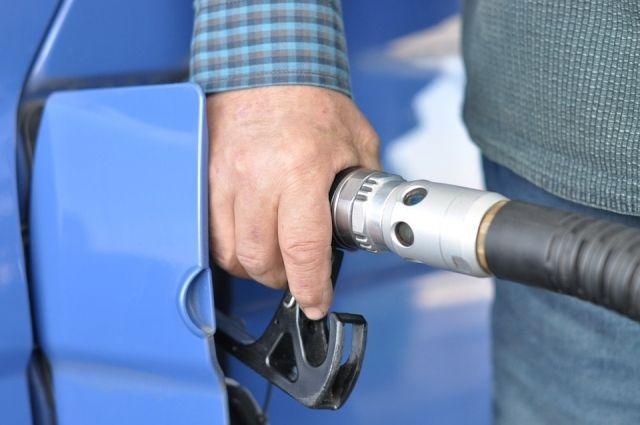 В Омской области подорожали все виды моторного топлива.