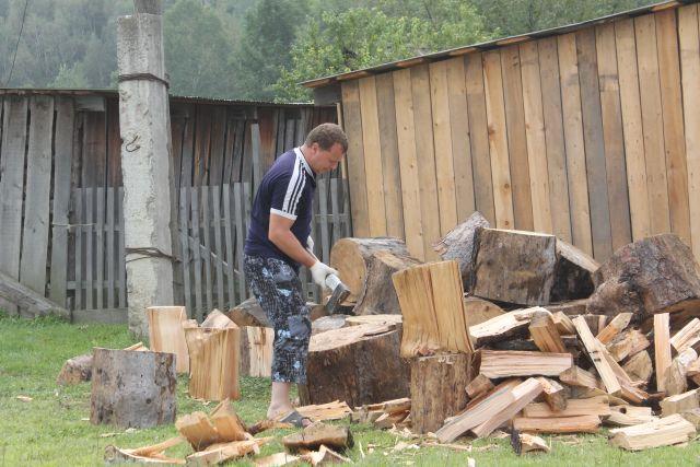 А может, лучше на дрова перейти?