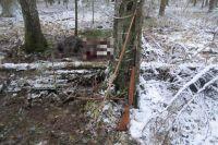 Тюменские охотинспекторы получат видеорегистраторы