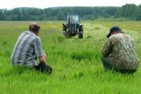 Некогда процветающий агрохолдинг ныне распродают по частям.